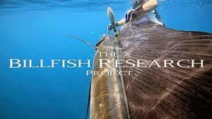 Scuba Break during Billfish Research Project