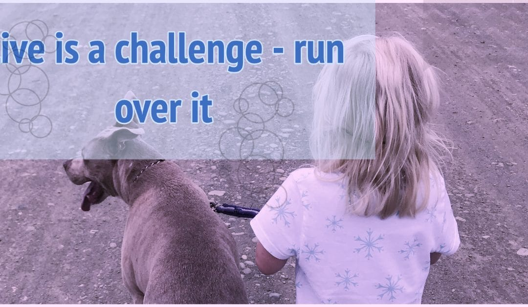 Life is a challenge – run over it